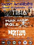 Tibia / Punk Haine Roll / Motor Riot