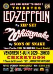 Tribute Whitesnake & Tribute Led Zeppelin +